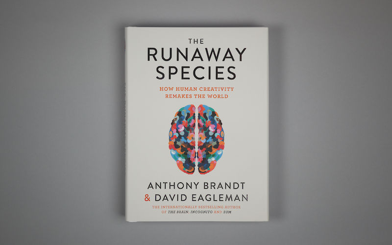 The Runaway Species by David Eagleman, Anthony Brandt gallery image 1