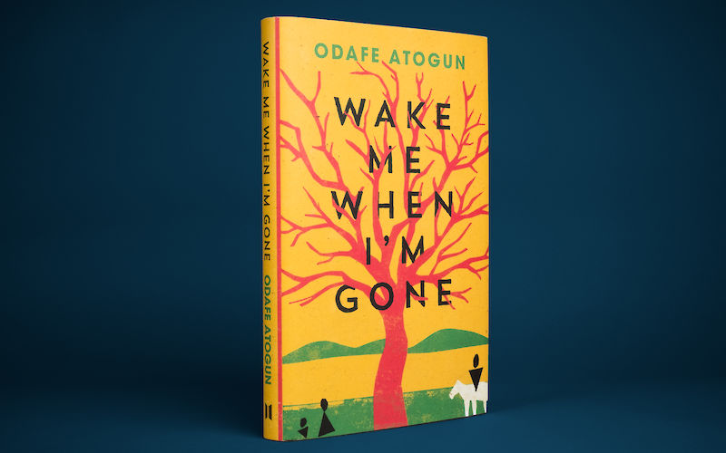 Wake Me When I'm Gone by Odafe Atogun gallery image 1