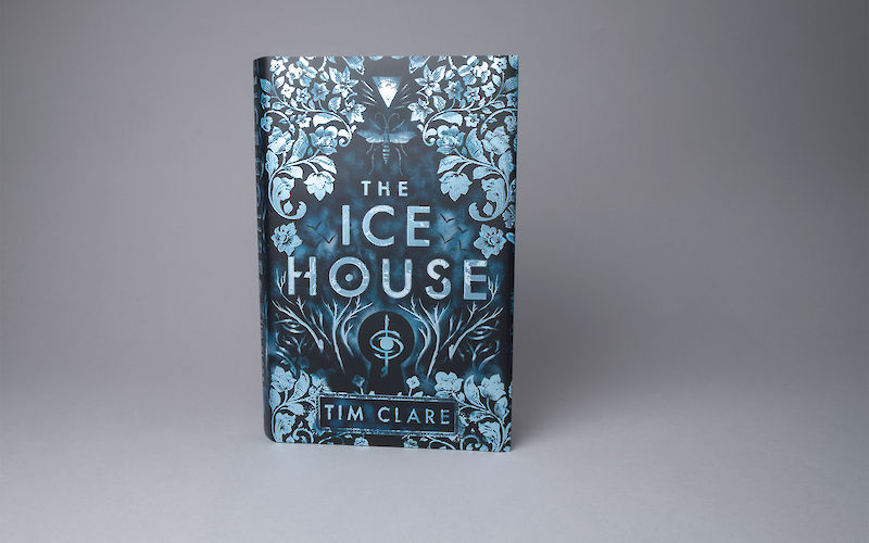 The Ice House by Tim Clare gallery image 2