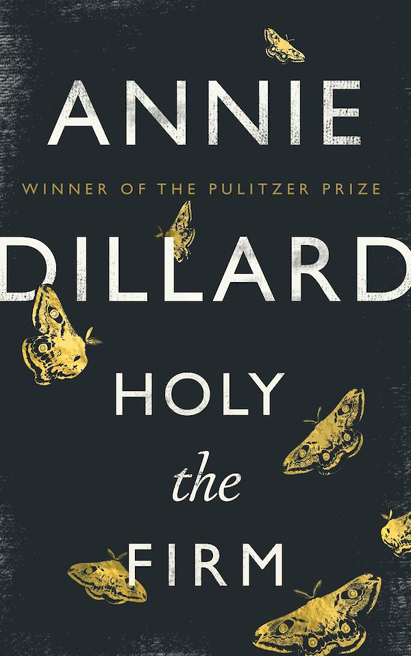 Holy the Firm by Annie Dillard (eBook ISBN 9781782117742) book cover