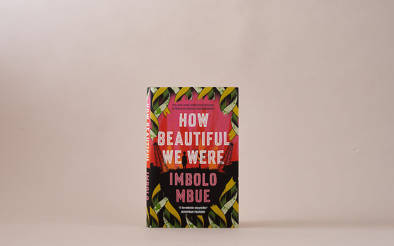 How Beautiful We Were by Imbolo Mbue gallery image 4
