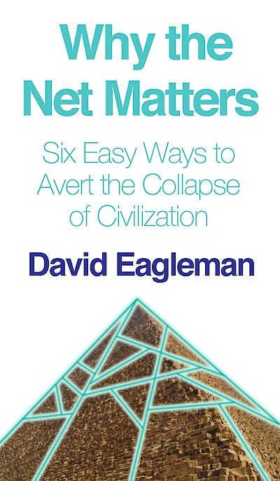 Why the Net Matters by David Eagleman cover