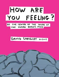 How Are You Feeling? by David Shrigley cover